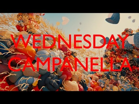 水曜日のカンパネラ『バク』1
